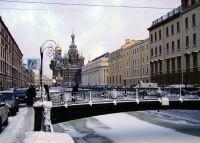 sp_zimoy